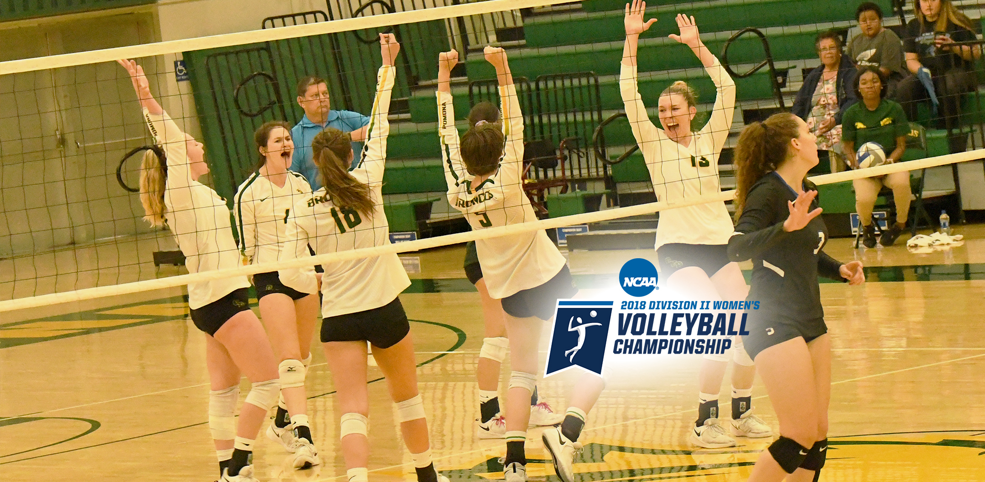 Volleyball Earns At Large Bid To Ncaa Tourney Cal Poly Pomona Athletics
